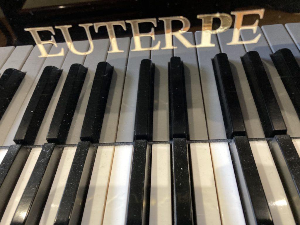 Occasion de 1995 en excellent état. Piano faisant parti des choix de partenariat de l'Entreprise BECHSTEIN.